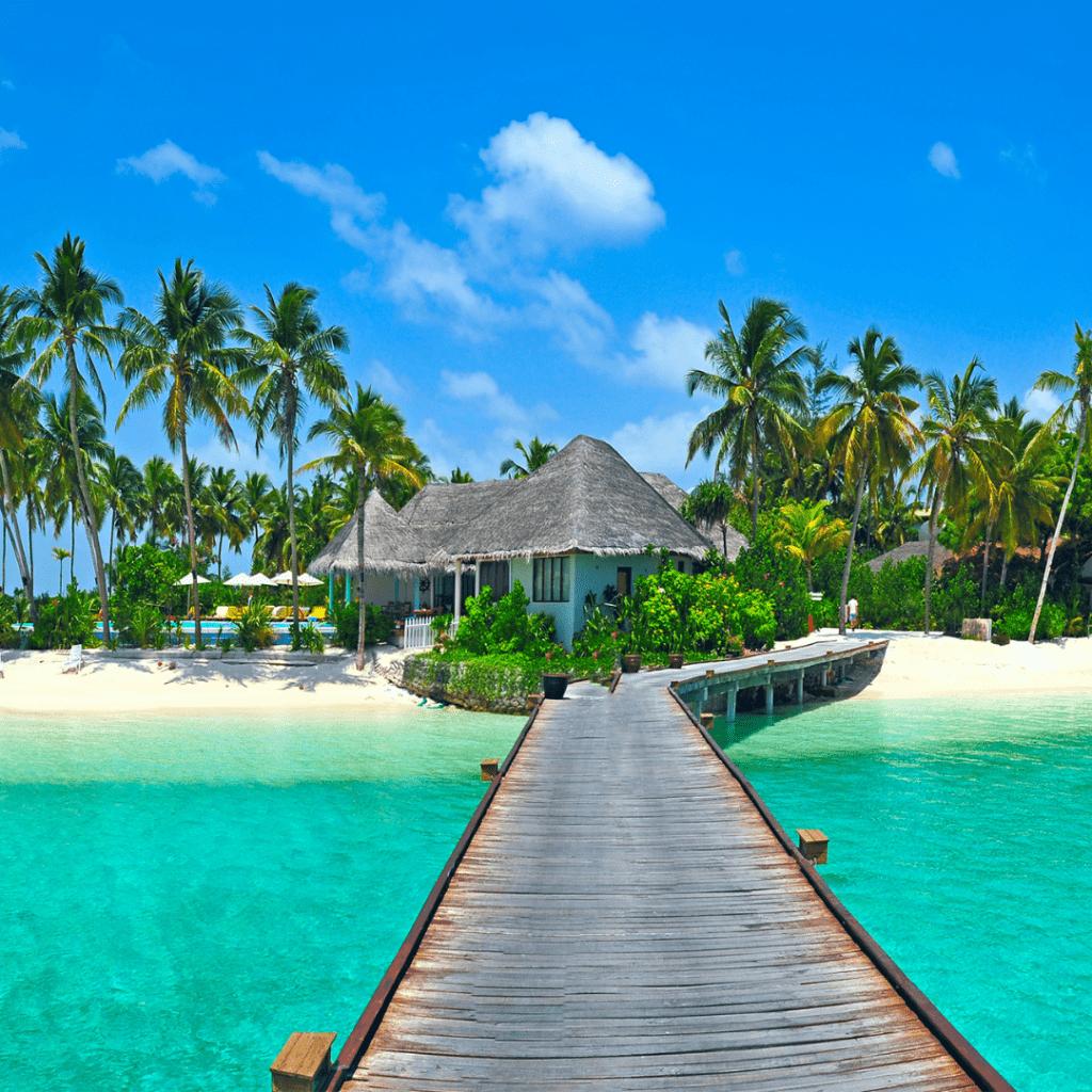 tropical ocean hut