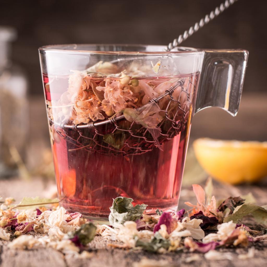 Echinacea Tea Infusion