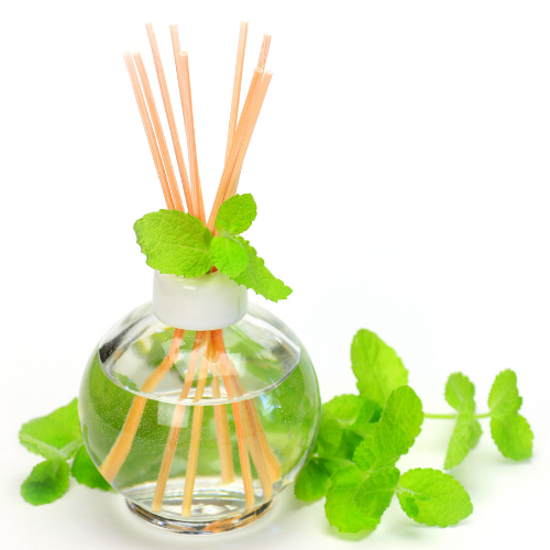 Herb Diffuser with oregano leaves