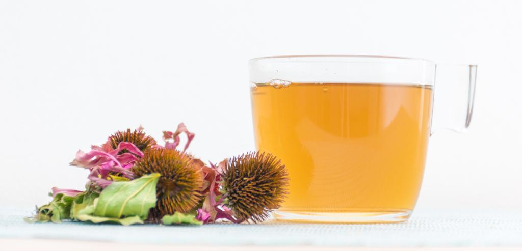 Echinacea Immunity Water