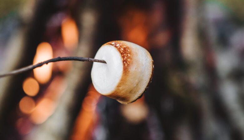 roasting marshmallow fire
